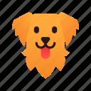 breed, canine, dog, golden, pedigree, pet, retriever icon