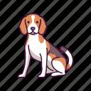 animal, beagle, dogs, pet