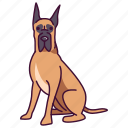 animal, dane, dogs, great, pet