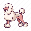 animals, dogs, pet, poodle icon