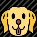 labrador retriever, dog, breed, pet, puppy, animal, cute