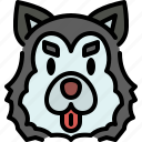 siberian husky, dog, breed, pet, puppy, animal, cute