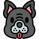 french bulldog, dog, breed, pet, puppy, animal, cute
