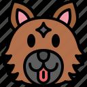 german shepherd, dog, breed, pet, puppy, animal, cute