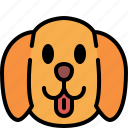 golden retriever, dog, breed, pet, puppy, animal, cute