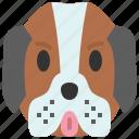 st. bernard, dog, breed, pet, puppy, animal, cute