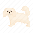 animal, breed, dog, mammal, pet icon