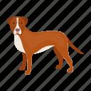 animal, breed, dog, mammal, pet, staffordshire terrier, stuff icon