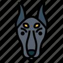 doberman, dog, pet, animals, breeds