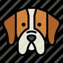 pointer, dog, pet, animals, breeds
