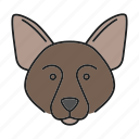 border, breed, collie, dog, pet, scottish, sheepdog icon