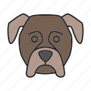 boxer, breed, dog, german, mastiff, pet, puppy icon