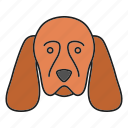 breed, cocker, dog, gundog, pet, puppy, spaniel icon