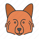 breed, dog, german, hound, pet, puppy, spitz icon