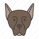 breed, doberman, dobie, dog, pet, pinscher, puppy icon
