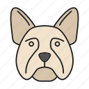 breed, bulldog, dog, french, frenchie, pet, puppy icon