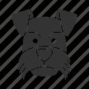 breed, dog, mini, pet, puppy, schnauzer, zwergschnauzer icon
