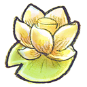 flower, lotus icon