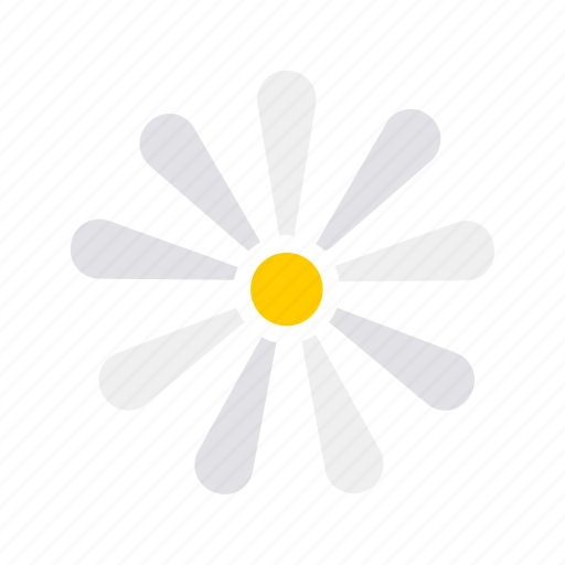 bloom, chamomile, easter, floral, flower, plant, spring icon