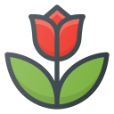 flower, spring, tulip icon