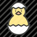 animal, bird, chicken, chicks, easter, egg, peeps