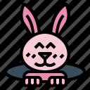 animals, easter, pet, rabbit