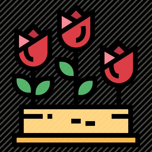 Flower, garden, nature, tulip icon - Download on Iconfinder
