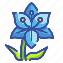 blossom, botanical, flower, garden, lily, nature, petals icon