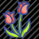 blossom, botanical, flora, flower, garden, nature, tulip icon