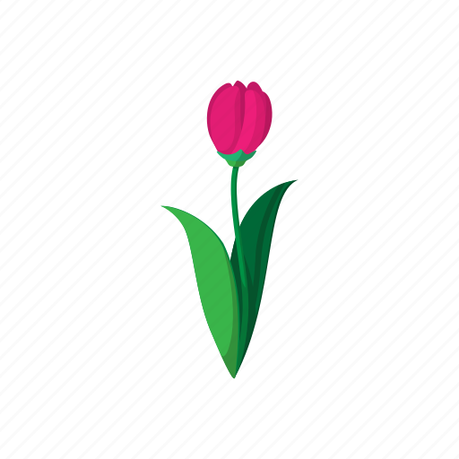 cartoon, floral, flower, nature, pink, spring, tulip icon