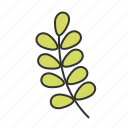 easter, leaf, nature, plant, spring icon