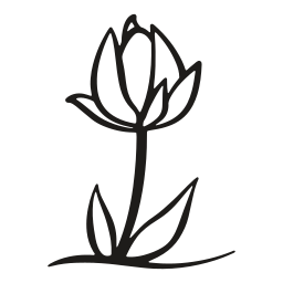 flower, growth, leaf, nature, petals, plant, tulip icon