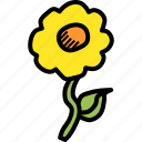 easter, ecology, flower, nature, plant, spring icon
