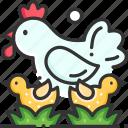 bird, chicken, farm, garden, hen