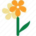 daffodil, easter, flower, yellow icon