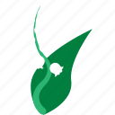 easter, flower, lily icon