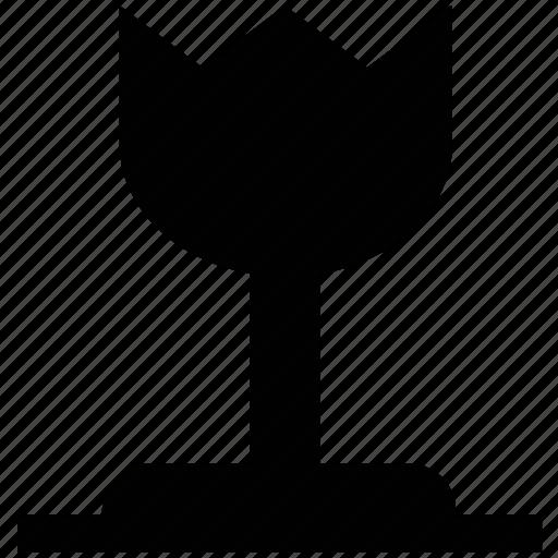 beauty, blooming, blossom, flower, tulip, tulip bud, tulip flower icon