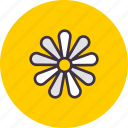 chamomile, easter, flower, spring icon