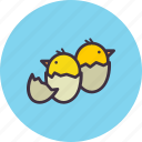 cute, chickling, egg, hatch, chicken, easter