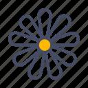 bloom, chamomile, easter, floral, flower, garden, spring icon