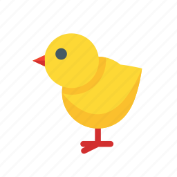chick, chicken, easter, spring icon