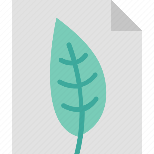 Environmental, program, eco, ecology, environment, leaf, nature icon - Download on Iconfinder