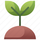 nature, plant, sapling, seeding, soil, sprout