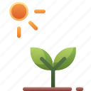 growth, nature, photosynthesis, plant, sprout
