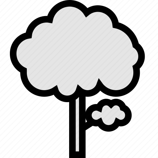 and, ecology, flower, forest, nature, plant, tree icon