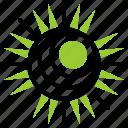 ecology, energy, sun