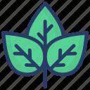 ecology, herbs, plant, plantae, shrubs icon