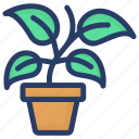 ecology, herbs, plant, plantae, potted plant icon