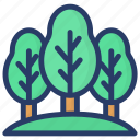 ecology, evergreen, forest, pine, plant, tree icon