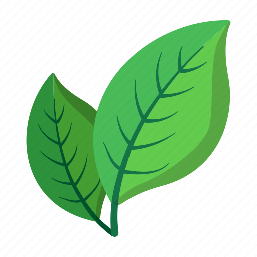 cartoon, leaf, natural, nobody, ripe, tree, two icon